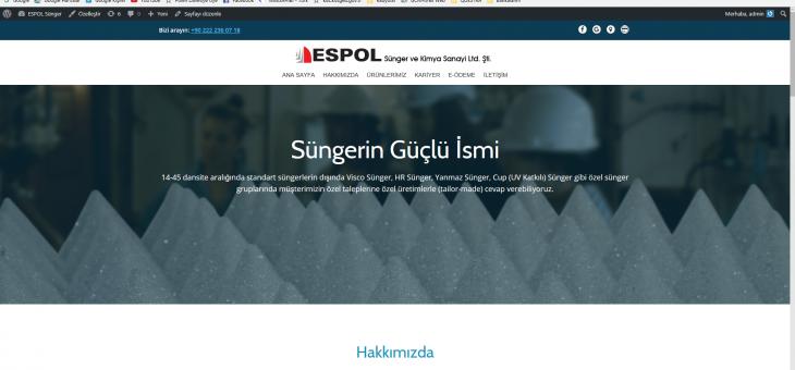 Yeni WEB sitemizle yayındayız…